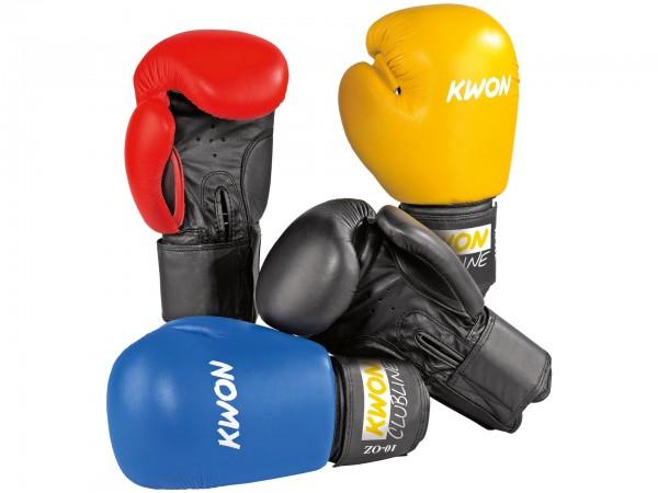 Boxhandschuhe POINTER 10 oz, in 4 Farben