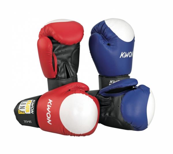 Boxhandschuhe POINTER 10 oz, mehrfarbig